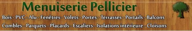 logo pellicier_2